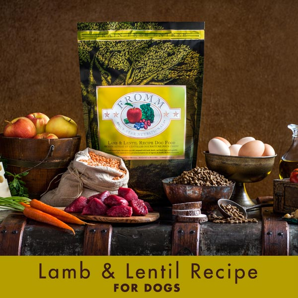 Lamb and Lentil Recipe For Dogs