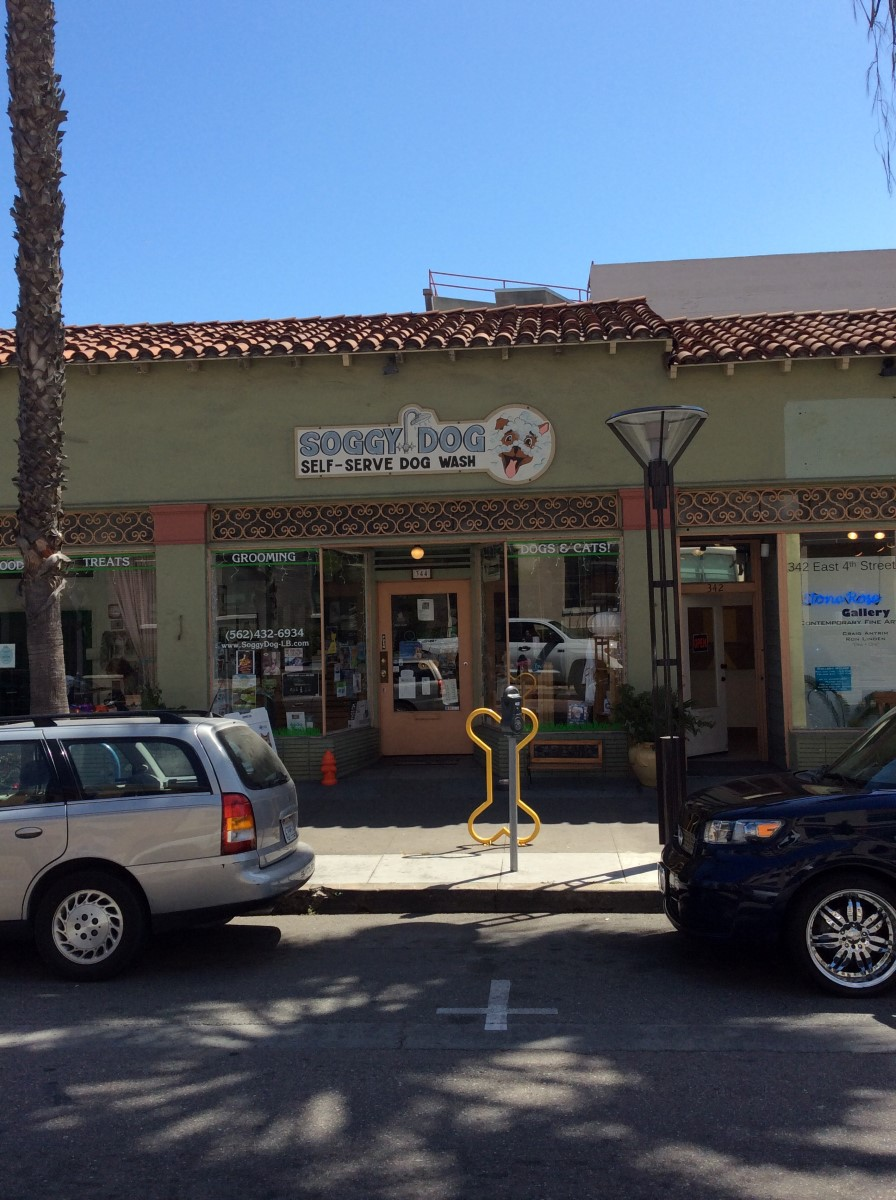 Soggy Dog Grooming And Pet Supplies Long Beach Ca