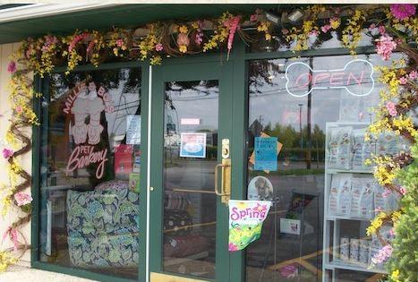 Millie Amp Bo S Barkery Decatur Il Pet Supplies