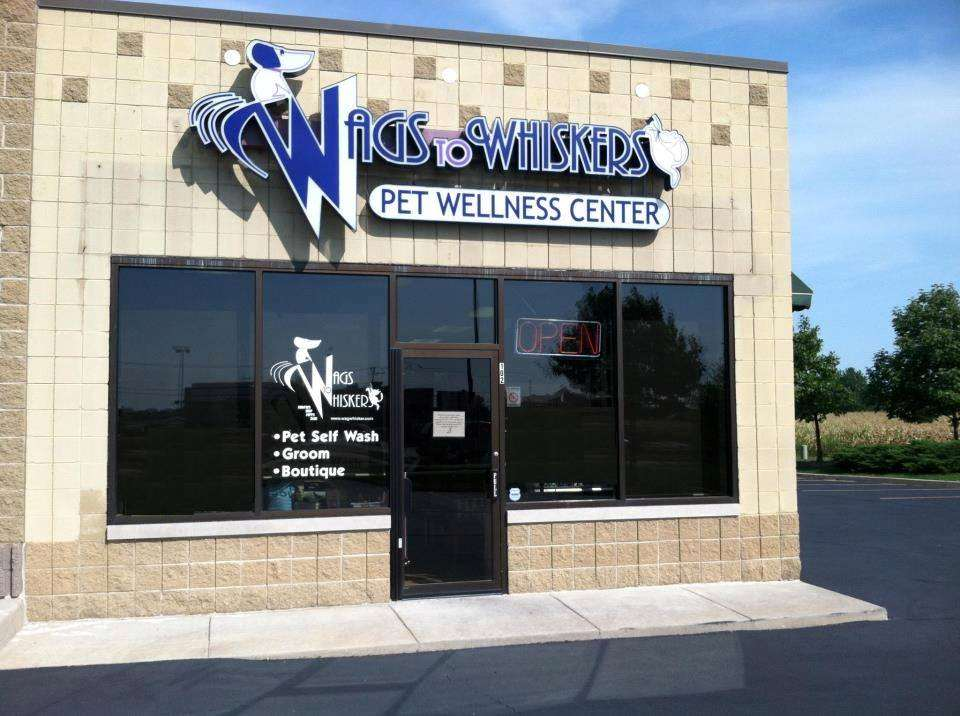 Wags to whiskers plainfield il pet supplies wags to whiskers solutioingenieria Gallery