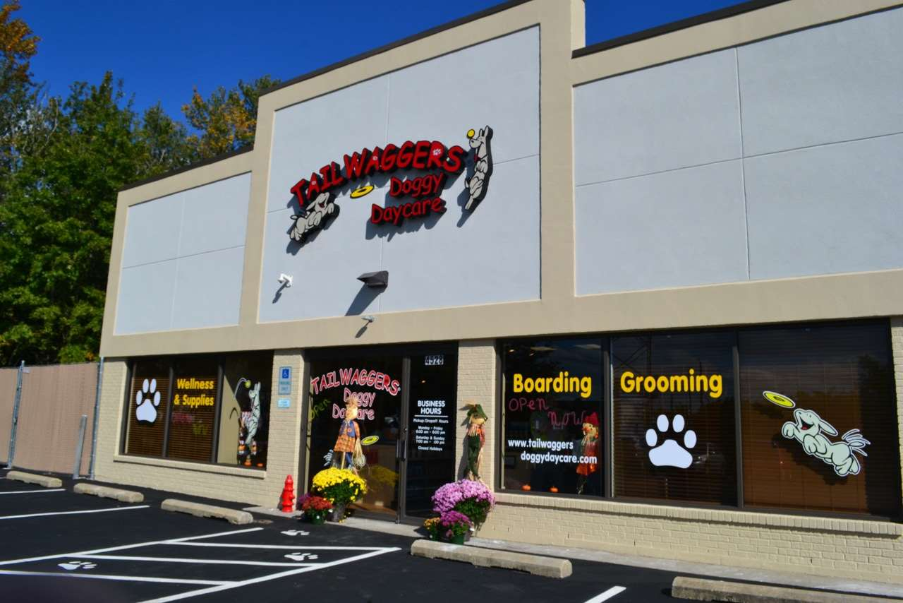 Tailwaggers Doggy Daycare Cincinnati Oh Pet Supplies
