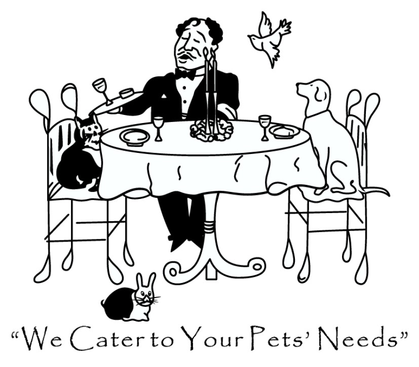 Pets Pets Pets