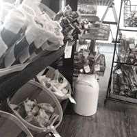 Blue's Natural Pet Market