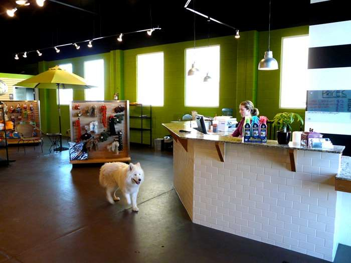 Paw Paws Dog Wash and Boutique