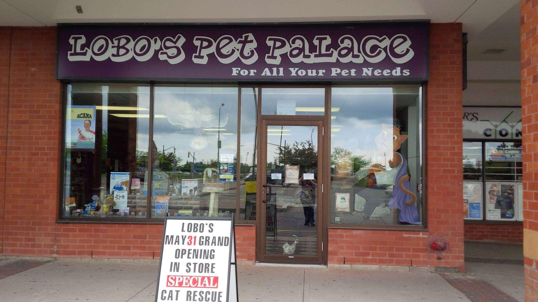 Lobo'S Pet Palace