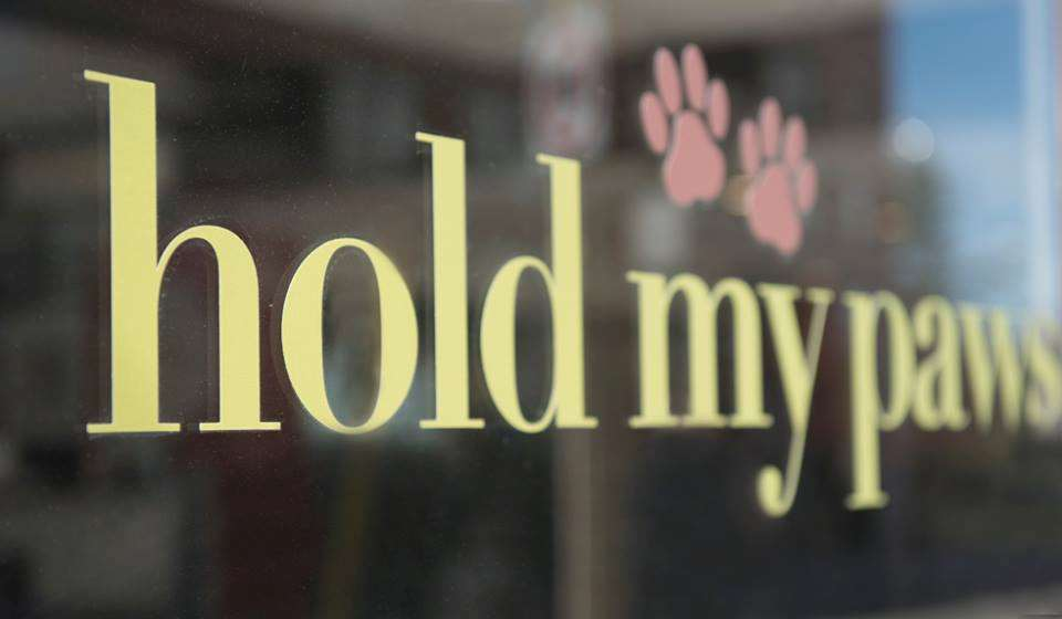 Hold My Paws Ltd.