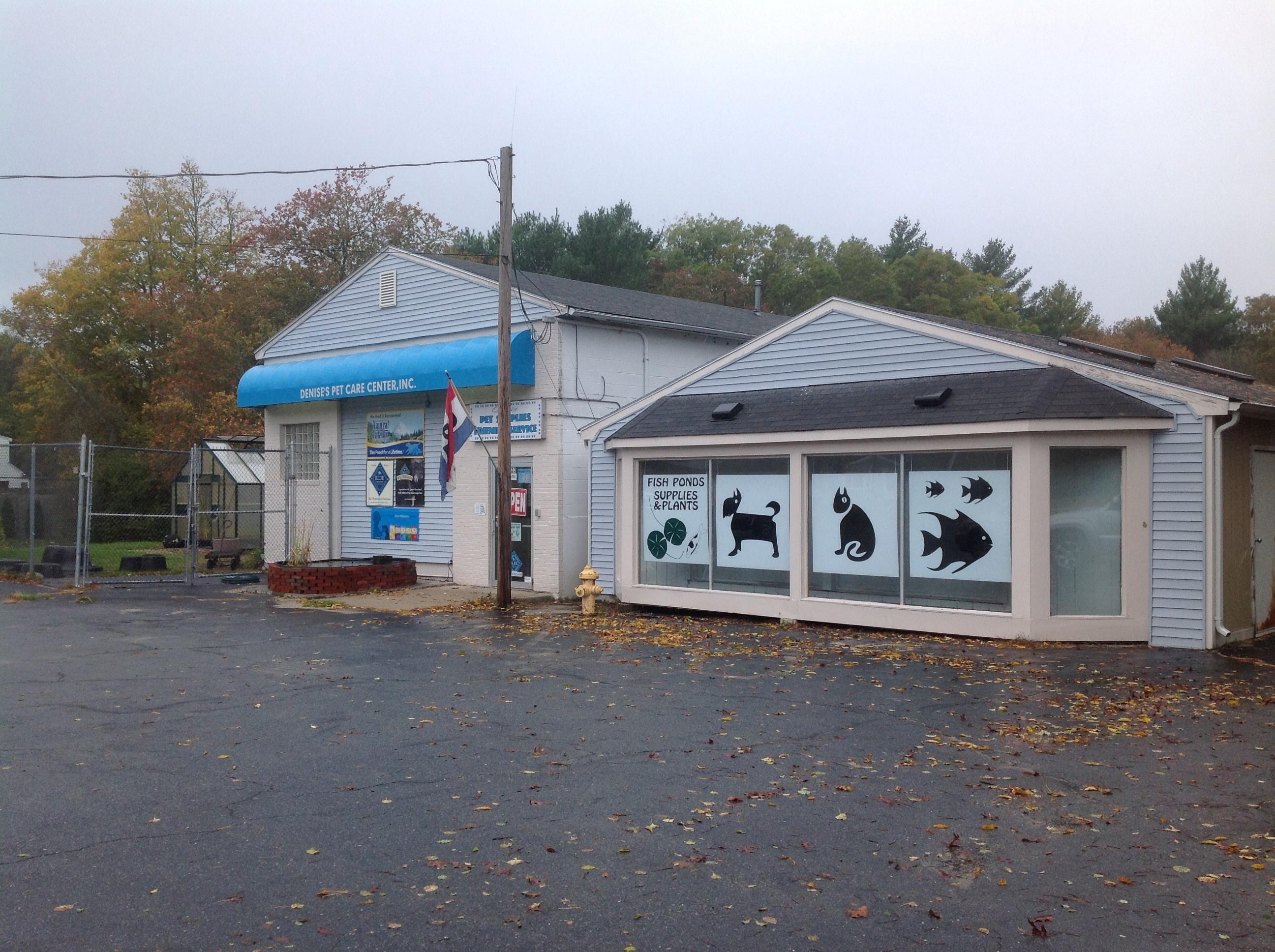 Denise S Pet Care Center Mattapoisett Ma Pet Supplies