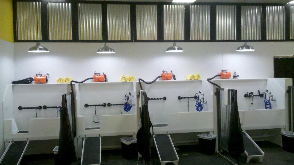 Self serve pet spa bakersfield ca pet supplies photos solutioingenieria Gallery