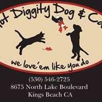 Hot Diggity Dog & Cat