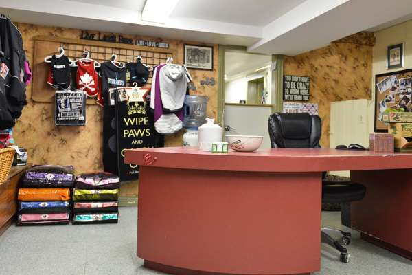 Tails Up Dog Grooming LTD