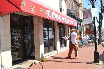 Dog Krazy Downtown