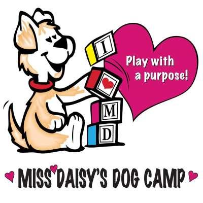 Miss Daisy's Dog Camp