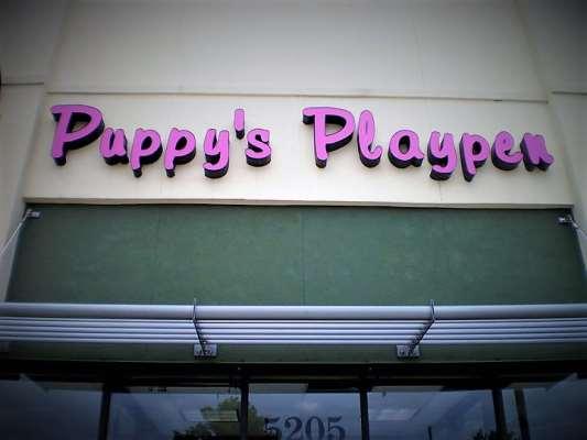Puppy's Playpen