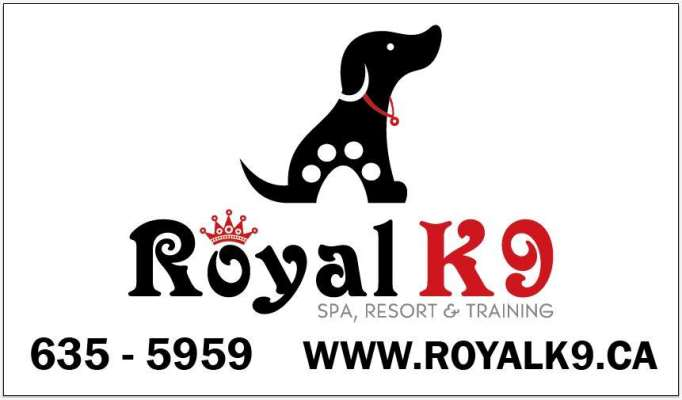 Royal K9 Spa & Resort