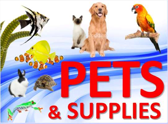 Rivers and Reefs Pet Center