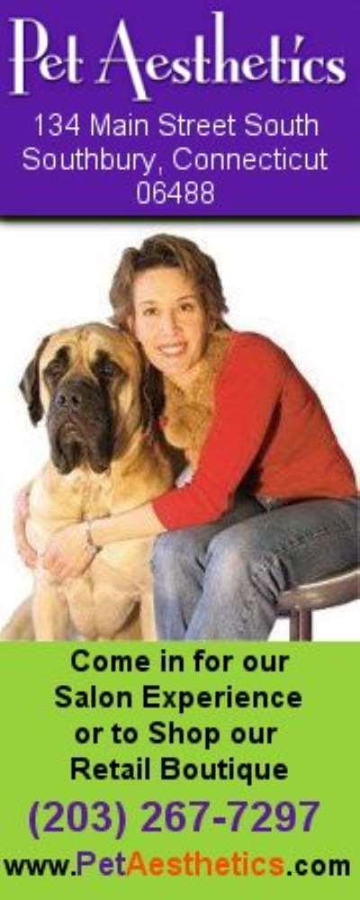Pet Aesthetics Salon & Boutique