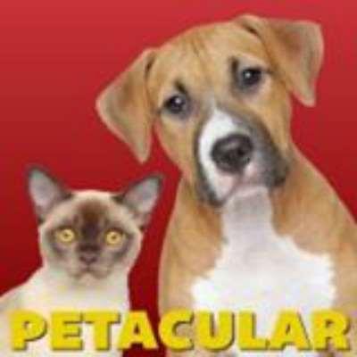 Petacular Food & Supply Ltd
