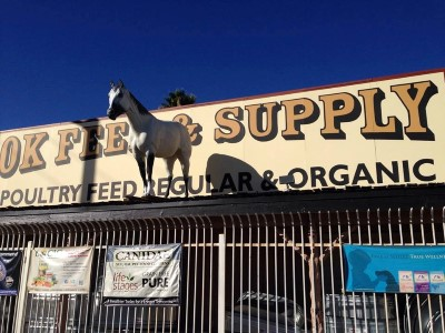 OK Feed & Supply