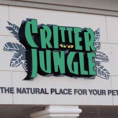 Critter Jungle