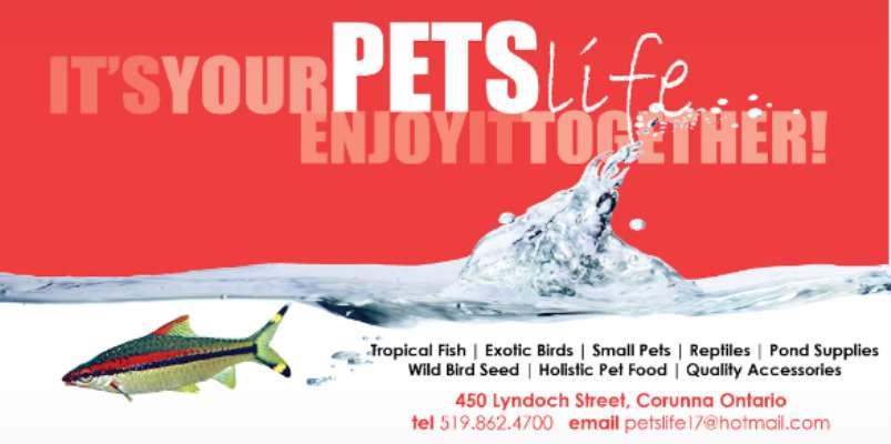 Pets Life