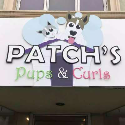 Patch's Pups & Curls