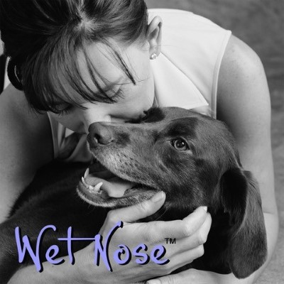 Wet Nose