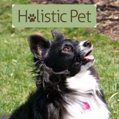 Nashville Holistic Pet
