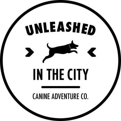 Unleashed In The City