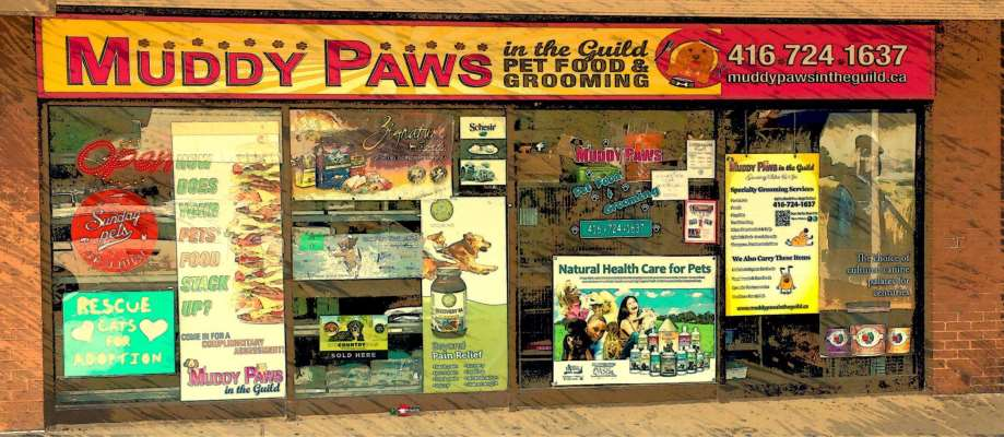 Muddy Paws In The Guild