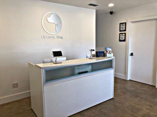 Uptown Dog Design District