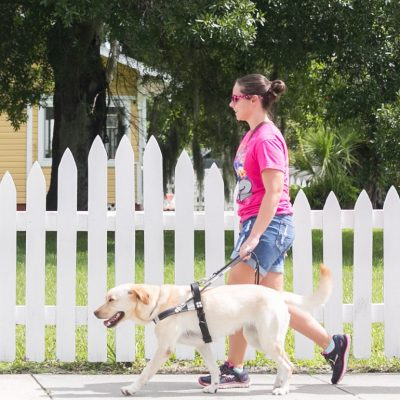 Guide Dogs for Visually Impaired
