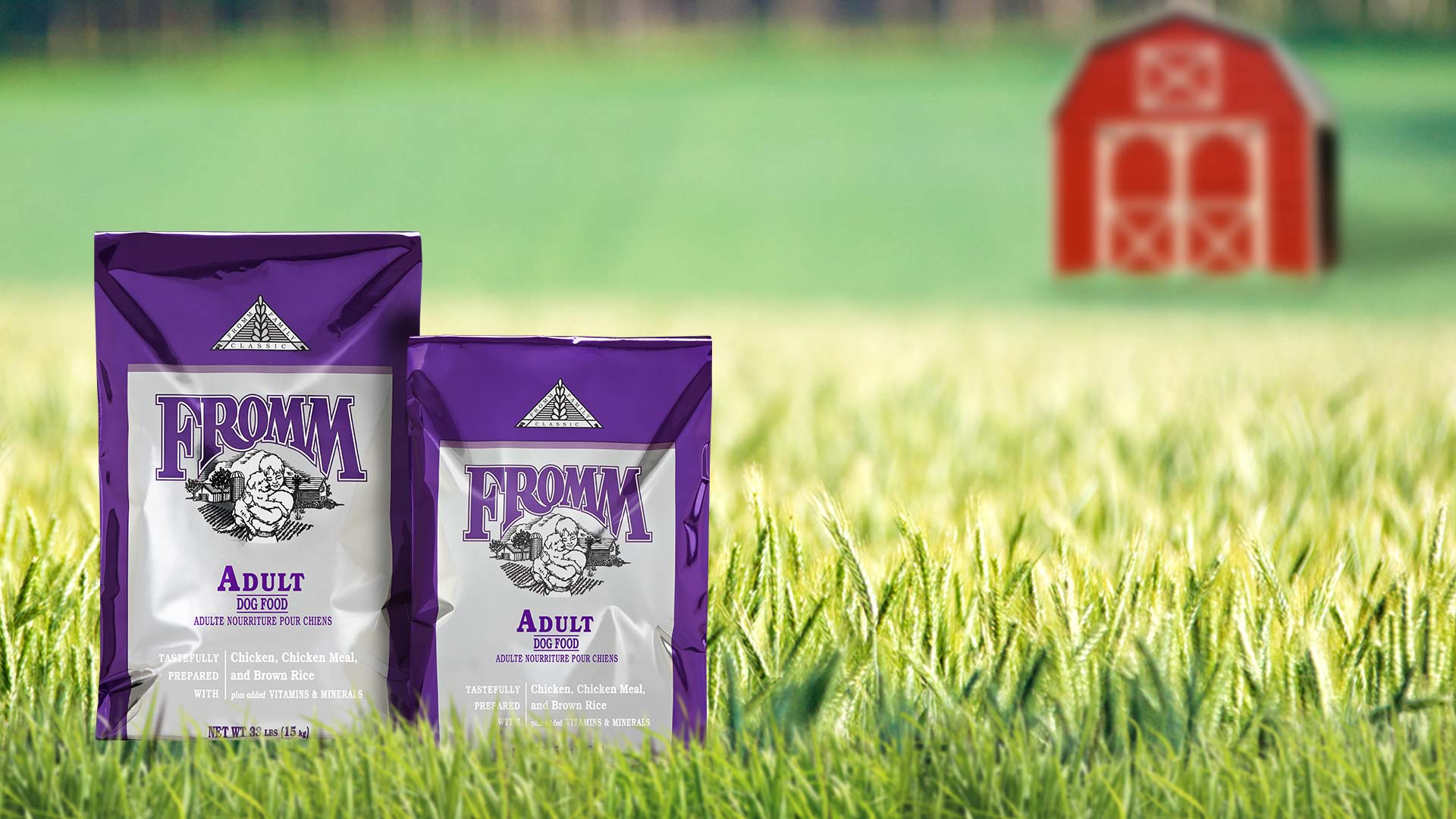 Adult Dog Food Fromm Family Foods